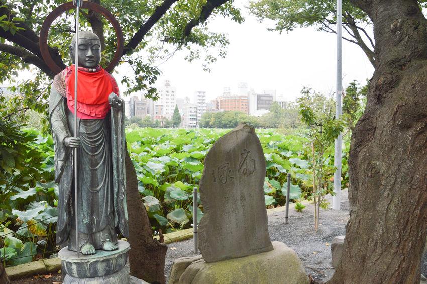 Buddha Buddhism Daikokuten Pond Religion Spirituality Statue Temple Ueno