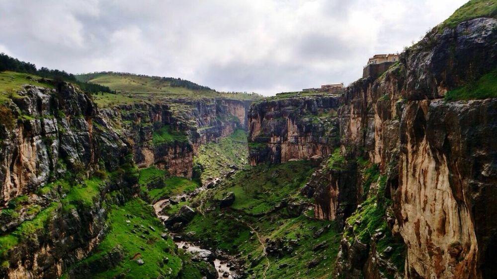Valley View Tholenski