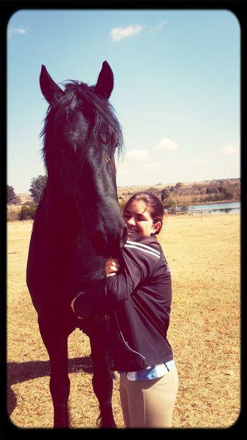 Loving Horses Loving Life!
