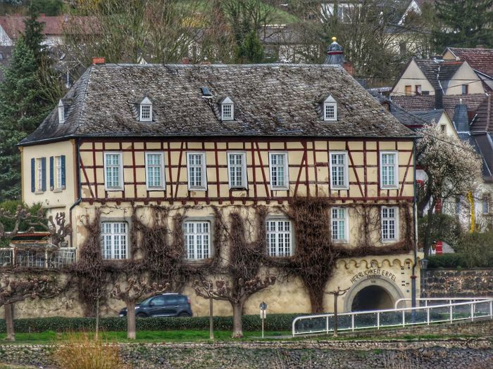 Bildung Erpel Rhine Erpel Rhine Historic Building Tree Window House Architecture Building Exterior Built Structure Residential Structure TOWNSCAPE Building Residential Building