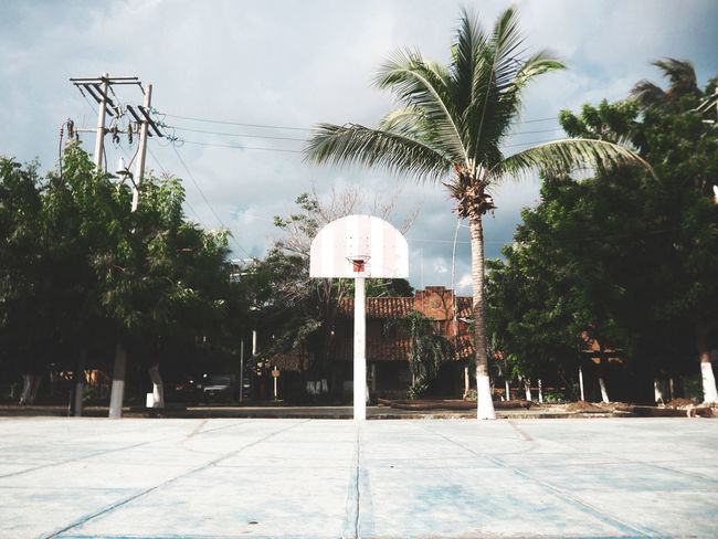Basketball Court Cloud - Sky Day Hoop Mazunte Mexico Nature No People Outdoors Pacific Coast Palm Tree Sky Sport Tree