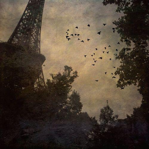Au revoir / Goodbye Paris IPhoneography Mobileart