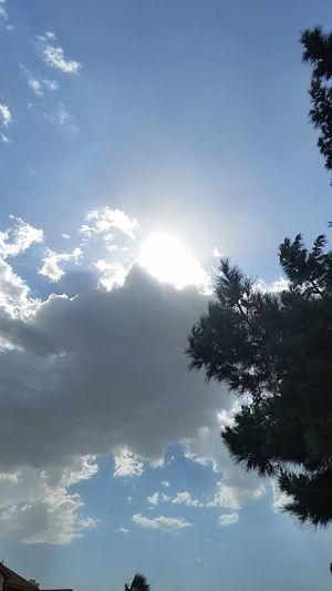 Escaping Sun
