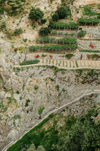 Stairs Italy Positano Amalfi Coast Costa Amalfitana Agriculture On Rocks Cliff