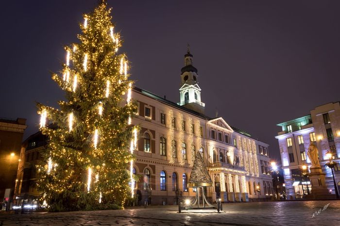A place where Christmas tree was developed! Riga C Architecture Christmas Decoration Christmas Tree Firstchristmastree Night Built Structure Illuminated Building Exterior No People Tree Outdoors City Architecture Artnouveau The Graphic City