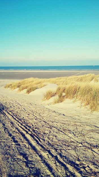 Heel strand voor jezelf YES