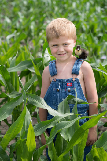 Farm Life Farm Animals Boys Casual Clothing Child Childhood Duckling Innocence Outdoors