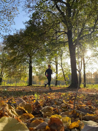 Full length of man standing by tree in forest during autumn