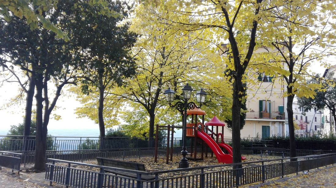 Tree Playground Outdoor Play Equipment Park - Man Made Space Day Outdoors No People Water Nature Sky
