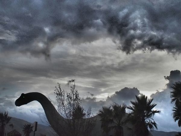 Sightseeing Animals Dinausaurs Stormy Weather Storm Clouds Imagination Believeitornot Traveling Nature