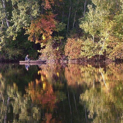 Fadd Duna Danube Horgasz Fishing ősz River Folyo Deadriver Természet Nature Vizpart Waterside