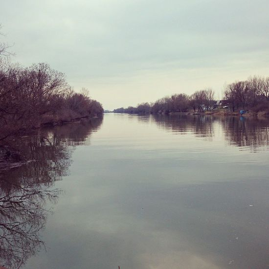 Water River Kőrös Nature Nofilter Spring Természet Folyo Viz Tavasz Mobilphotography
