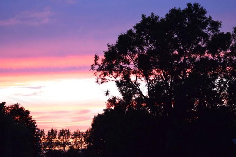 Northamptonshire Sunset. Unedited. Taking Photos Hello World Northamptonshire Sunset Sunset Silhouettes Corby Colorful Beautiful Sunset EyeEm Best Shots - Sunsets + Sunrise Sunset Silhouette First Eyeem Photo