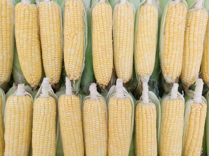 Full frame shot of fresh corns at store