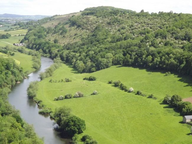 The Great Outdoors - 2016 EyeEm Awards Symonds Yat Green Leaves Trees And Sky Trees Forest Lush Healthy Landscape_Collection Landscape_photography Hillside Hills And Valleys Hills Ross On Wye Holiday Outdoors The Great Outdoors River River View High Up See For Miles