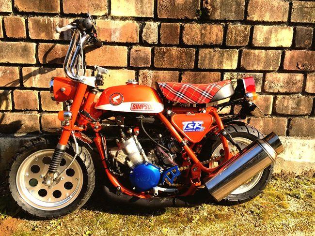 Honda Monky Z50A Yz125 2st Orange