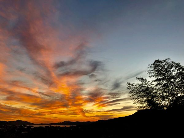 A Romantic Sunset Sky. (181102-181126) Sky Sunset Cloud - Sky Beauty In Nature Tree Silhouette Scenics - Nature Nature Environment Non-urban Scene Romantic Sky Orange Color Tranquil Scene Tranquility Idyllic Outdoors No People