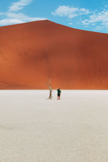 Man by bare tree on desert against sky