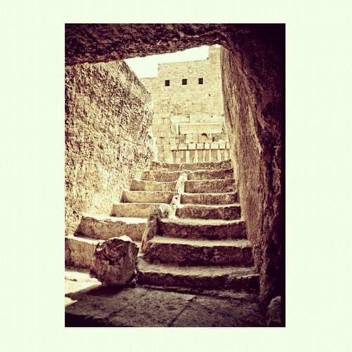 Step up to the Western Wall. (Jerusalem) #israel #jerusalem #wall #steps # #igla_challenge_repetition #contrast #shadows #instagramhub #jj_forum #jj Wall Jerusalem Steps Israel Contrast Jj  Instagramhub 30likes Jj_forum Theultimateexplorer Igla_challenge_repetition Shadows