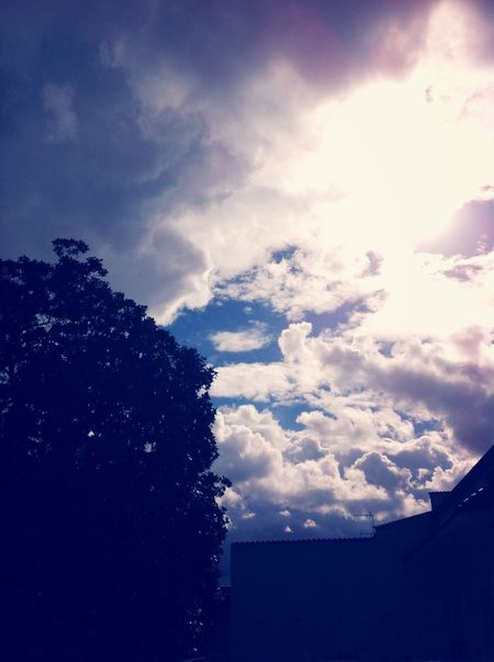 Natureoying the Sun] EyeEm Nature Lover Sky After Rain