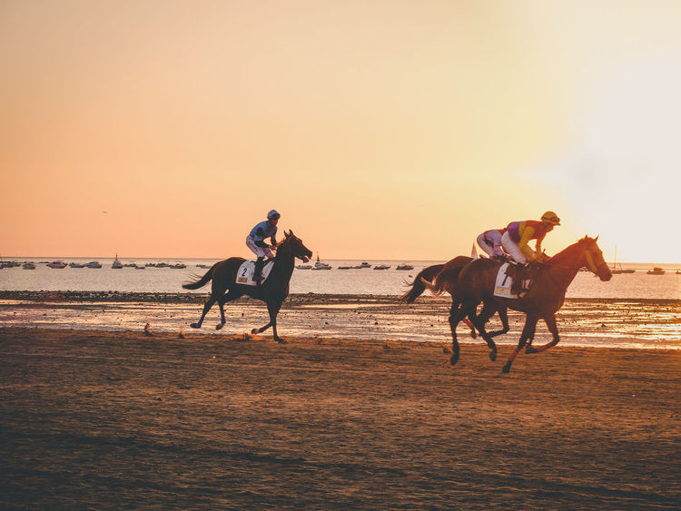 Otro año mas de carreras Cadiz Horses SPAIN Sanlúcar De Barrameda Activity Animal Domestic Domestic Animals Fujifilm Group Of Animals Group Of People Horizon Over Water Horse Horseback Riding Land Livestock Mammal Outdoors Race Real People Ride Riding Sea Sky Sunset