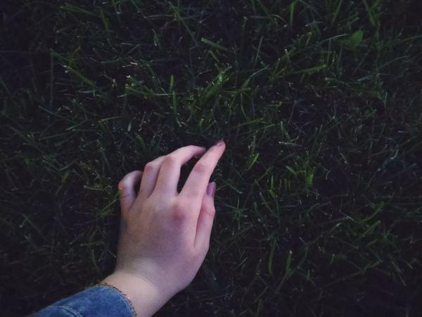 Hellosummer  Grassland Myhand Grassfield Grass