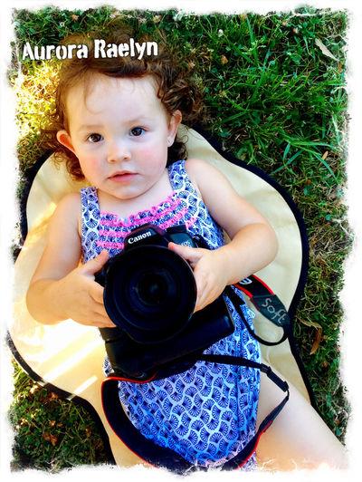 Canon Sigma 70d Beautiful 17-70 DSLR