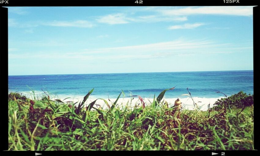 Kealia Scenic Point Surf Sesh