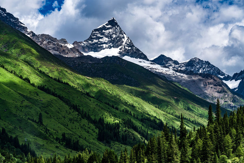The snow peak of Siguniang mountains. Mountain Scenics - Nature Beauty In Nature Sky Mountain Range Environment Cloud - Sky Snow Landscape Tranquil Scene Tranquility Plant Snowcapped Mountain Cold Temperature Nature No People Green Color Tree Non-urban Scene Mountain Peak Range
