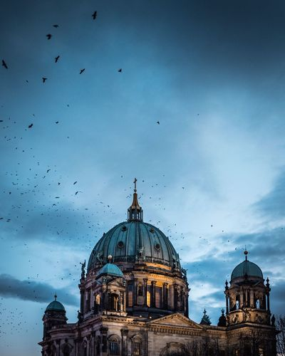 Berliner Dom Blue Hour Blaue Stunde Lumix G9 Dome Architecture Flying Building Exterior Built Structure Sky Religion Cloud - Sky Outdoors Bird No People Large Group Of Animals City