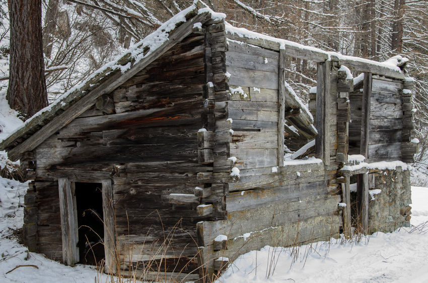 Abandoned Bad Condition Cabin Cabin In The Woods Damaged Day Destruction Deterioration Log Messy Obsolete Old Ruined Run-down Snow Stack Transient Wall Wood Wood - Material Wooden