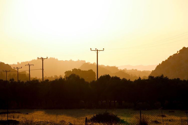 Rhodos, Greece  Beauty In Nature Cable Connection Dusk Electricity  Electricity Pylon Field Fuel And Power Generation Land Nature No People Outdoors Plant Power Line  Real Colors Scenics - Nature Silhouette Sky Sun Sunset Telephone Line Tranquil Scene Tranquility Tree