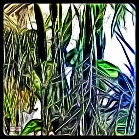 plants in my window...effects&filtered. Photographed Enjoying Life Enjoying The Sun