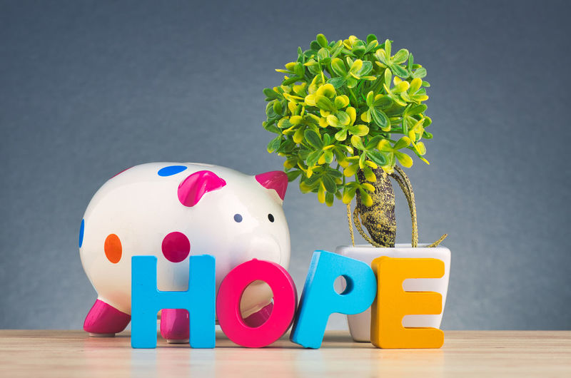 HOPE word made from wooden letter and piggy bank on desk over gently lit dark background Indoors  Still Life Table Multi Colored Studio Shot No People Close-up Plant Flowering Plant Toy Wood - Material Flower Nature Animal Representation Finance Red Vulnerability  Gray Background Vase Gray