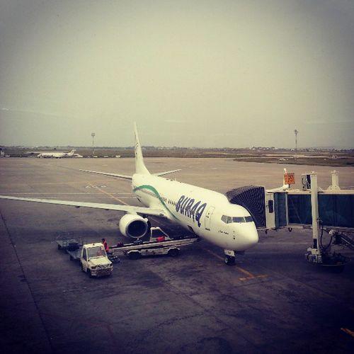 Back to libya