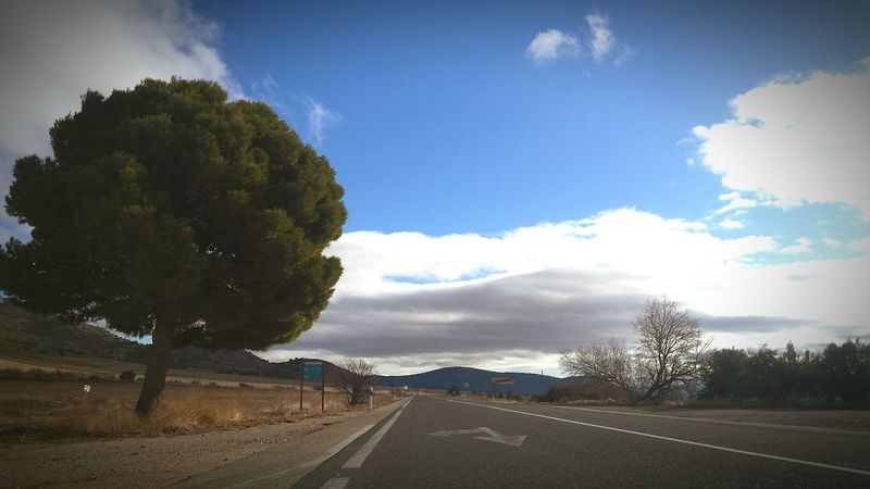 Por el altiplano murciano... Casa Blanca Altiplano Murcia Provincia Camino Cloud - Sky Tree Sky Blue Road Tranquility Outdoors