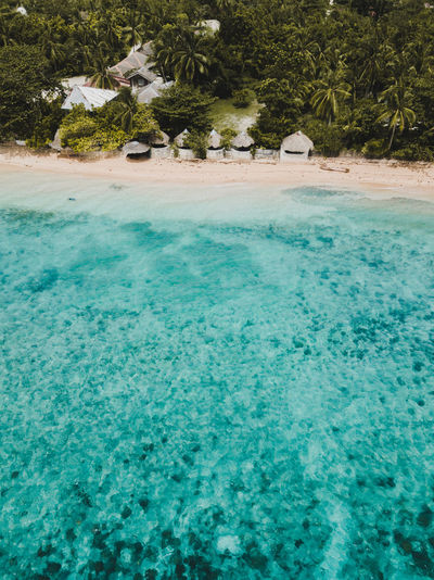 Drone  Aerial View Beach Beauty In Nature Day Lagoon Land Luxury Nature Ocean Outdoors Palm Tree Plant Scenics - Nature Sea Tranquil Scene Tranquility Travel Travel Destinations Tree Trip Tropical Climate Turquoise Colored Vacations Water