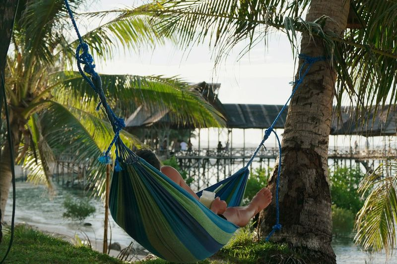 Paradise Hammock Beach Life Beach Ocean Relaxing Shade Palm Tree Siargao Tropical Paradise Tropical Climate Philippines Outdoors Second Acts Serenity Woman Swimming Lifestyles Travel Destinations Tropical Beauty In Nature Tranquility Sea Hammock Time Hammocklife An Eye For Travel Love Yourself