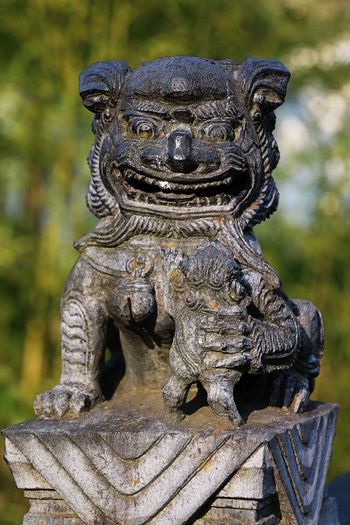 Lion Mouth Art Art And Craft Asian Lion Carved Close-up Focus On Foreground Lion Shaped No People Outdoors Sculpture Statue Stone