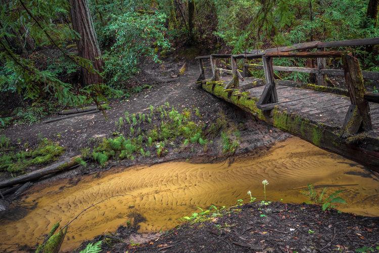 Old Bridge Over