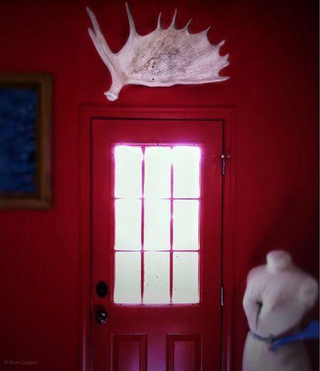 Moose Antler & Dress Mannequin in a Red Room