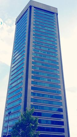 World Trade Building Baltimore, md. Architecture Buildings & Sky Buildings Structures EyeEm Buildings High In The Sky Blue Sky Baltimore