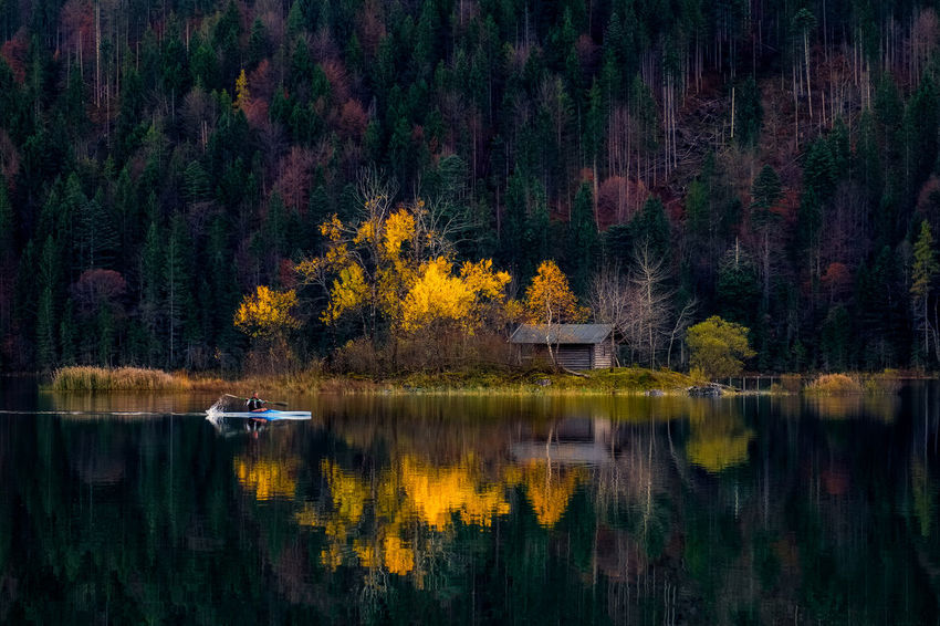 Autumn Beauty In Nature Change Day Forest Lake Leaf Nature No People Outdoors Reflection Scenics Tree Water Perspectives On Nature