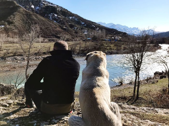 Rear view of man sitting with dog at riverbank against mountain