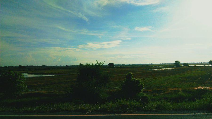 F I E L D Phra Nakhon Si Ayutthaya Thailand Agirlinthewold