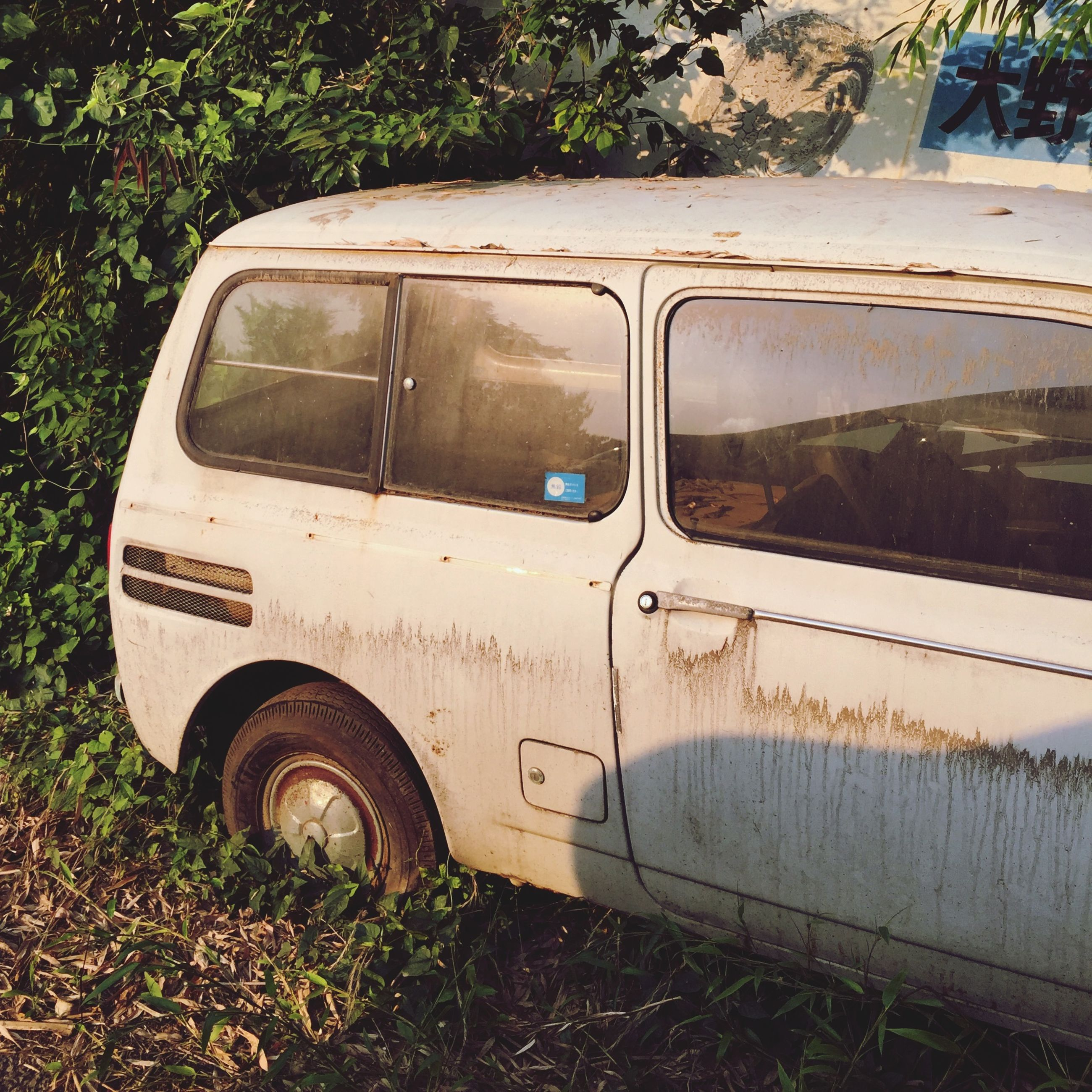 transportation, mode of transport, land vehicle, car, tree, day, travel, grass, part of, old, abandoned, outdoors, no people, street, side-view mirror, train - vehicle, headlight, field, road, close-up