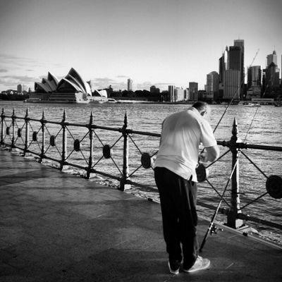 Sony Nex Nex5n Skopar 21mm sydney sydneycbd bnw bw blackandwhite monochrome voigtlander australia operahouse streetphotography
