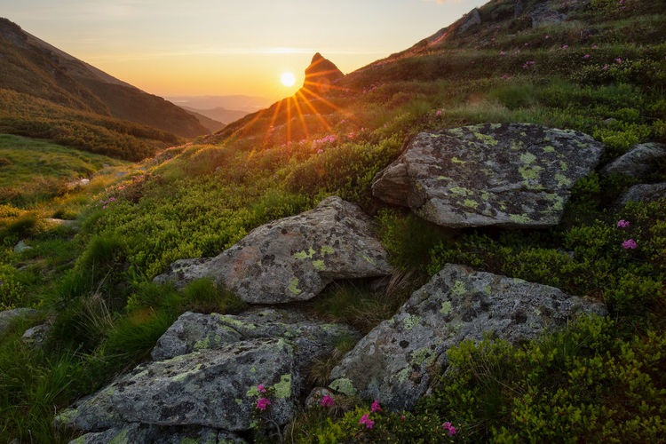 Scenic view of mountains against sky during sunrise in rodnei mountains