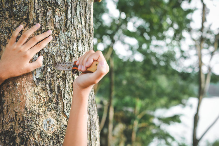 Cropped image of woman poking knife by tree trunk