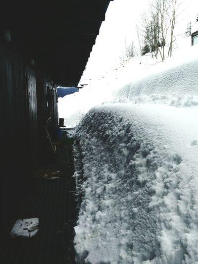 My home on Sauris Big Snow Sauris
